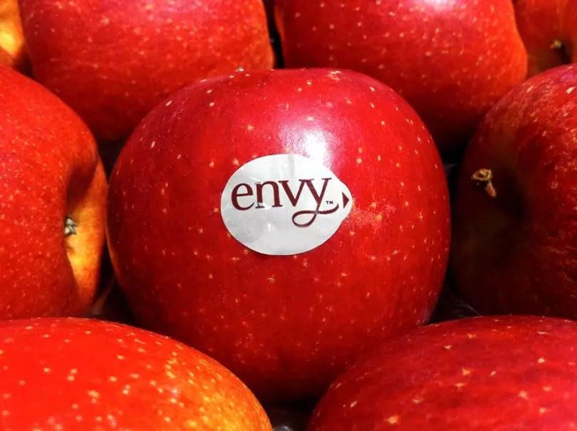 envy-mela-ok