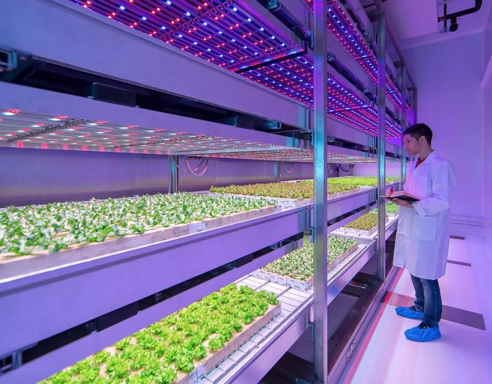 Philips-lighting-vertical-farming