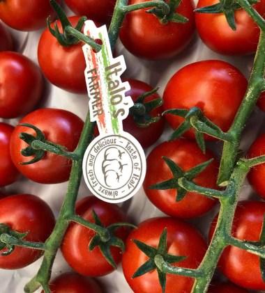 ciliegino Italo's Farmer