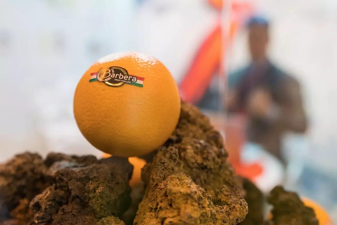Barbera-arancia-Fruit-Attraction-2018-Fm