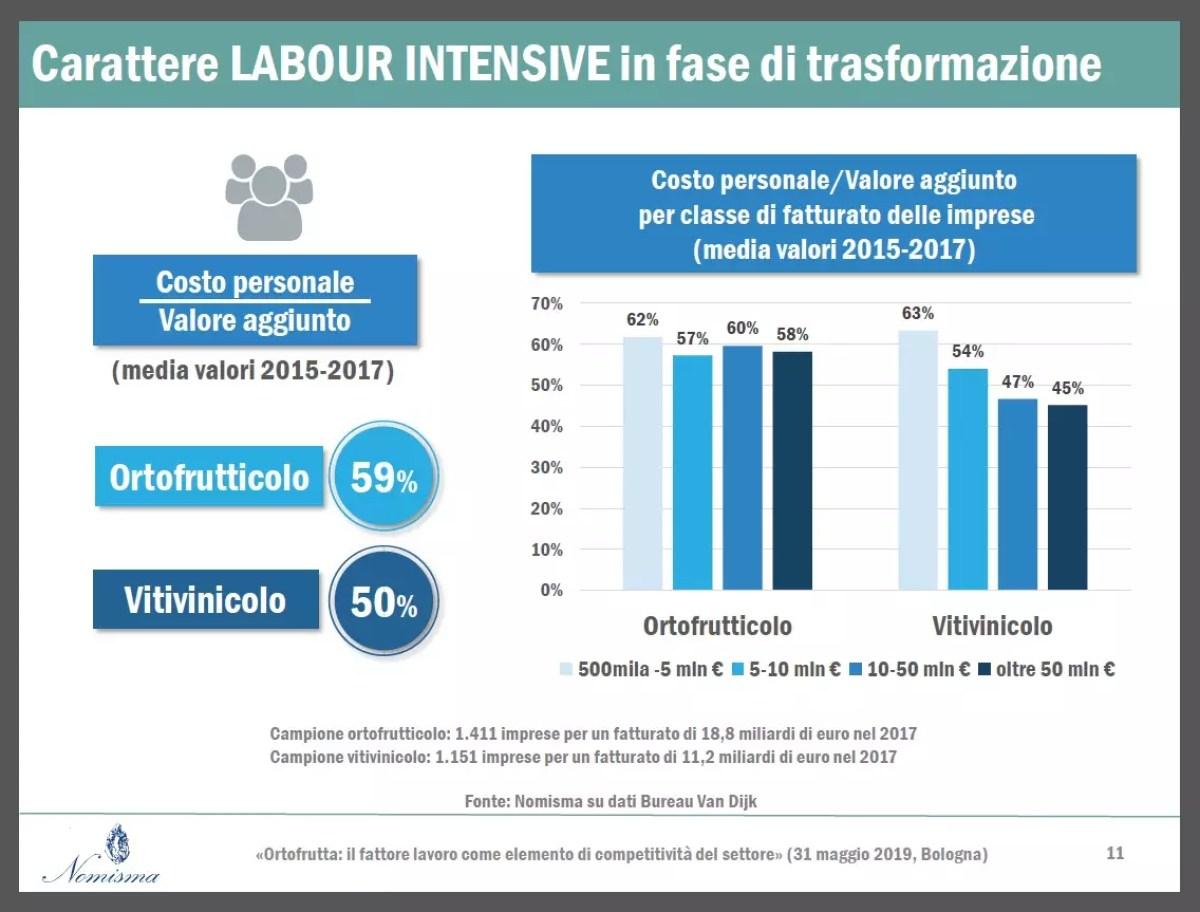 Nomisma-labour-intensive-Italia-Ortofrutta.31-05-19