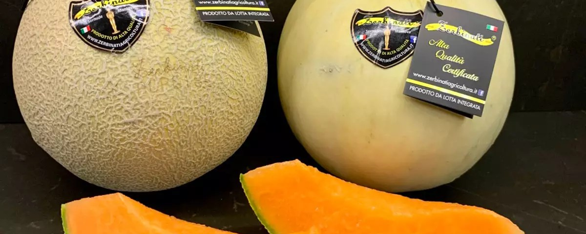 Zerbinati-meloni-Oscar-Sermide