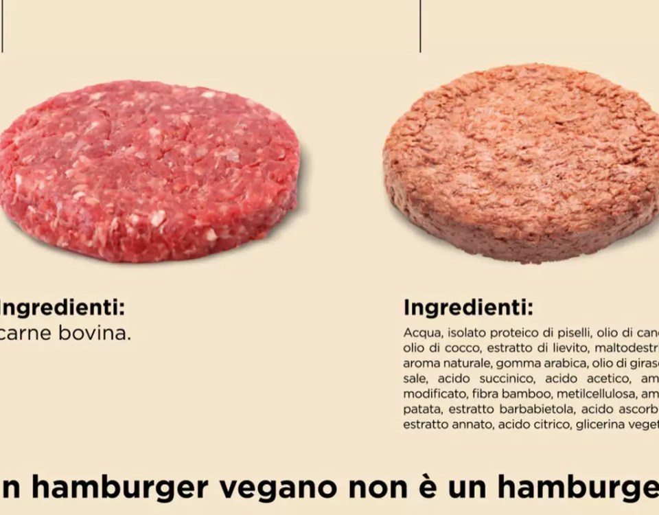 Hamburger-vegetale