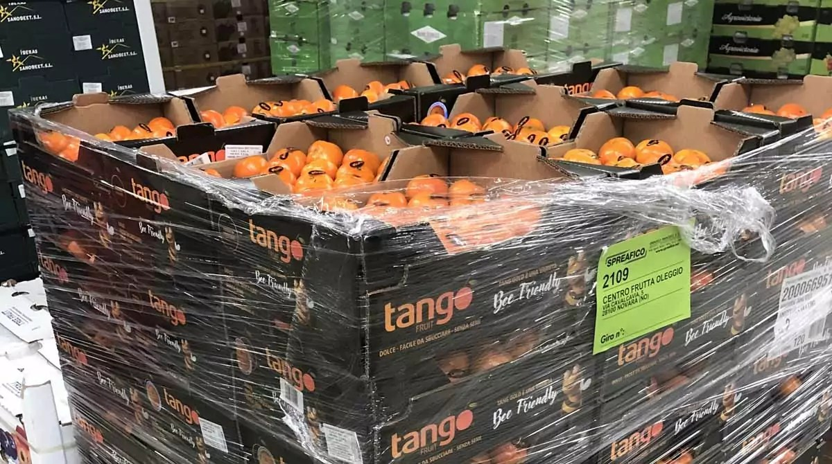 Spreafico Tango Fruit