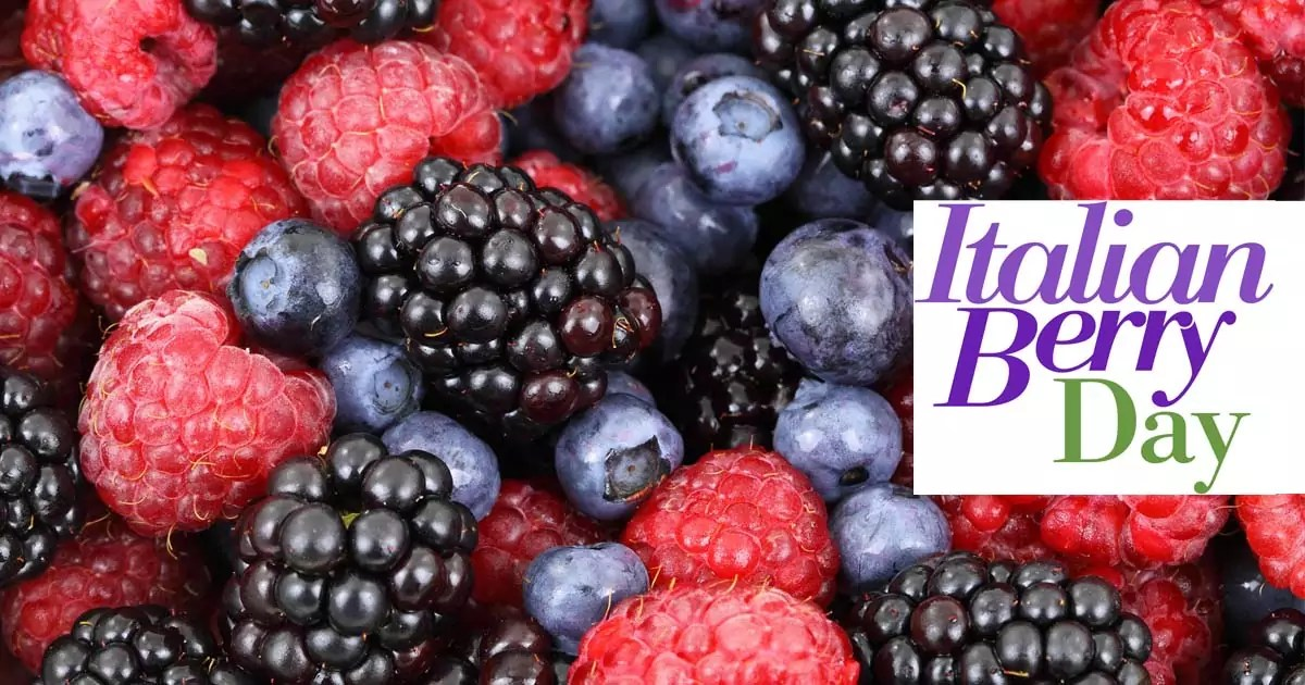 Macfrut berry day