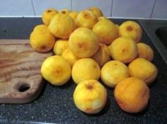 Marmalade recipe