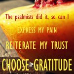 The psalmists did it, so can I: express my pain, reiterate my trust, choose gratitude