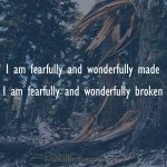 Fearfully and Wonderfully Broken