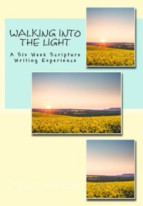 Walking Into The Light by Stacey Patrick