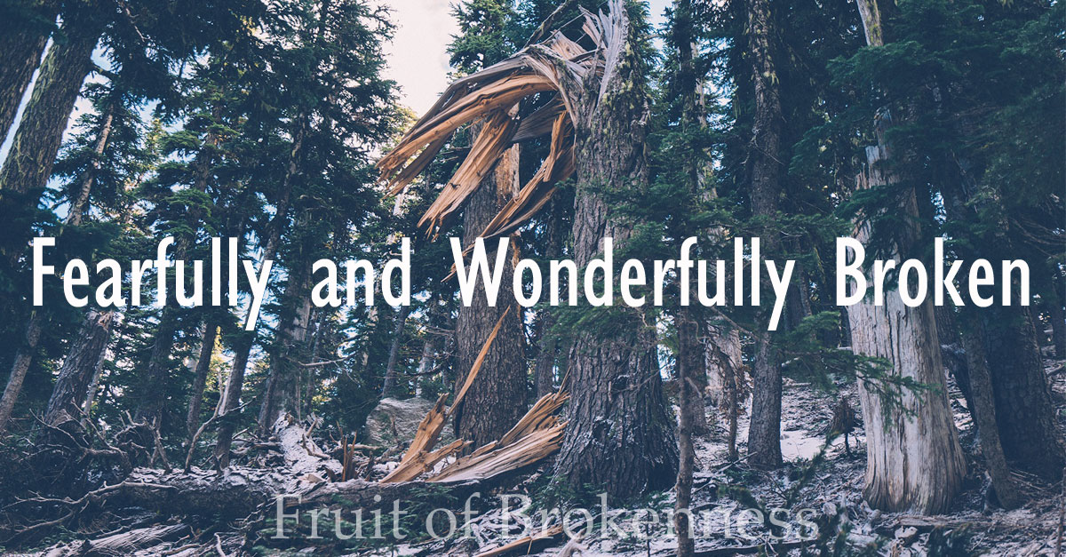 I am fearfully and wonderfully made; I am fearfully and wonderfully broken. God has a plan. I have a purpose.