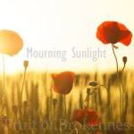 Mourning Sunlight