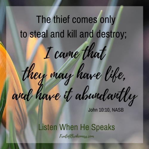 Scripture for Holy Week, John 10:10... Abundant life, IN CHRIST