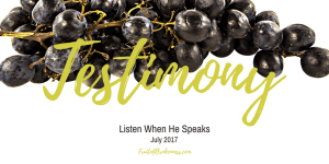 From the witnesses of Jesus' life, death, and resurrection, straight down through history to YOU! Are you a living testimony for your peers and the next generation? Listen When He Speaks, July 2017 theme: TESTIMONY
