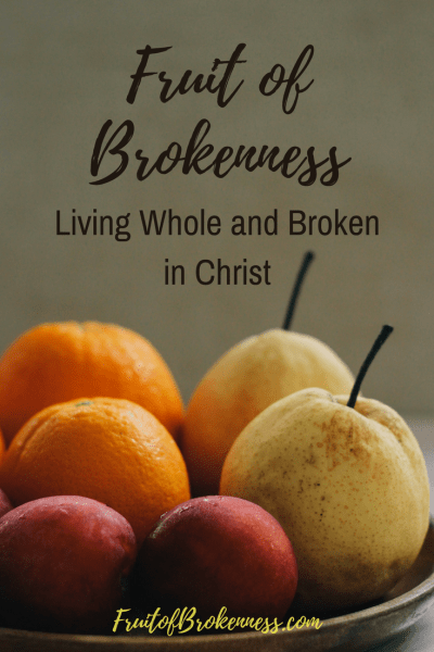Mental illness doesn't disqualify Christians from useful service. God's strength is made perfect in our weakness. In Christ, we can live broken and whole. The most-read Fruit of Brokenness posts of 2017 can encourage you, too.