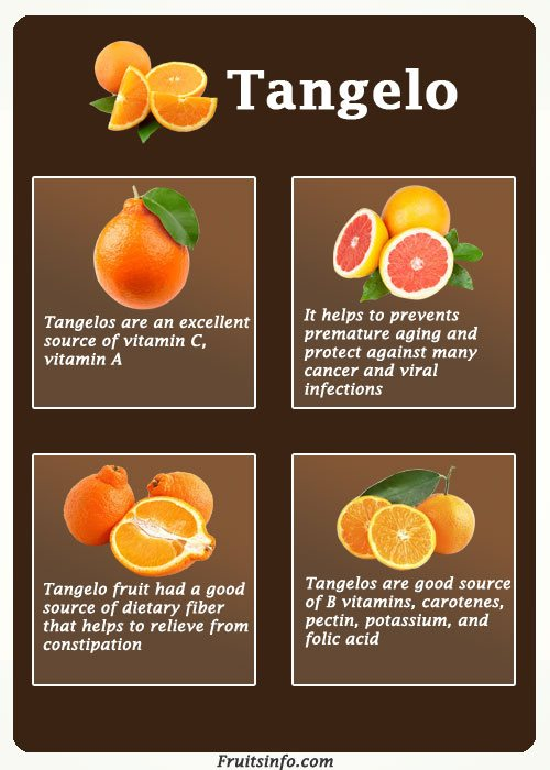 tangelo fruit tree salad cake recipe juice nutritional