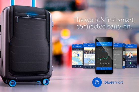 Bluesmart travel case