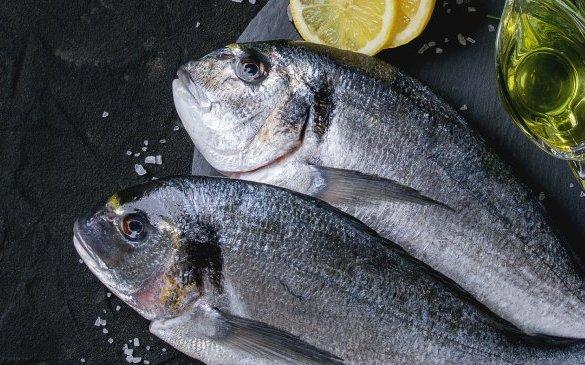 Fish Collagen healthy food