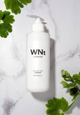 wnt hair shampoo