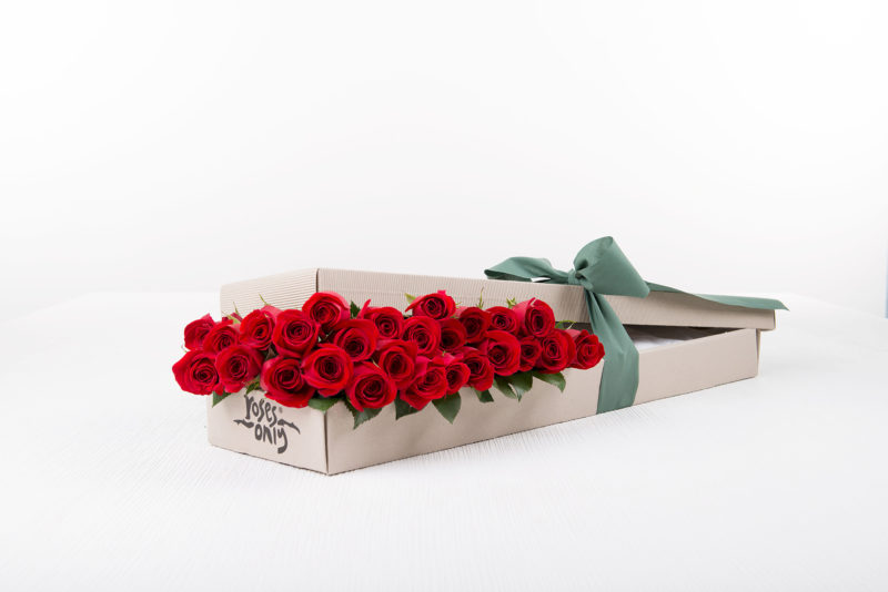 rose only gift