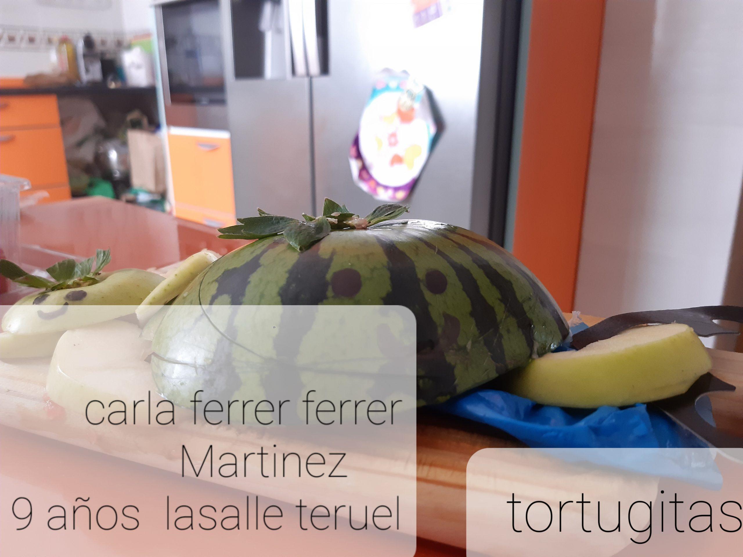 Carla F. La Salle Teruel 0435