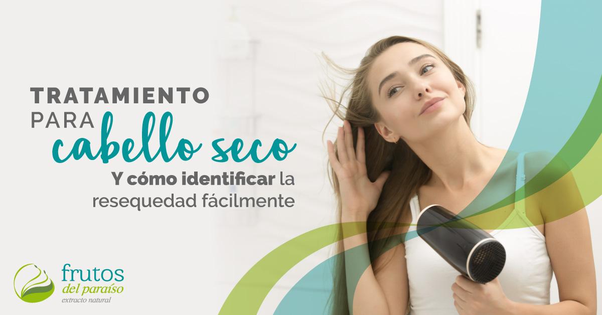 tratamientos-para-cabello-seco