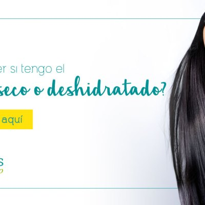 ¿Cómo saber si tengo el cabello seco o deshidratado?