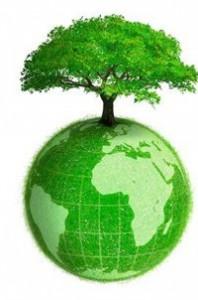 albero mondo