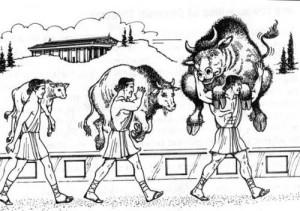 Milone e il vitello