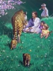 Tigre e umani
