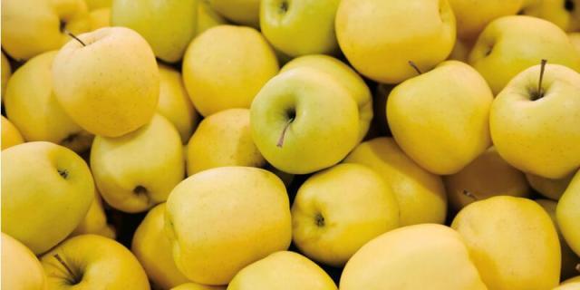 Risultati immagini per mele gialle