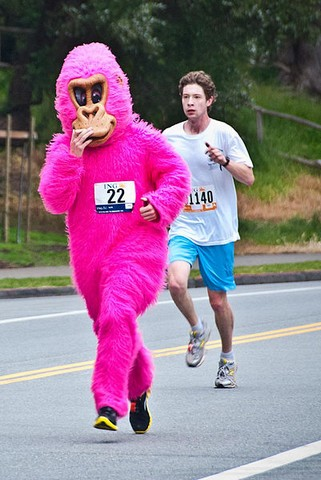 401px-2010_05_16_Bay_2_Breakers_pink_gorilla