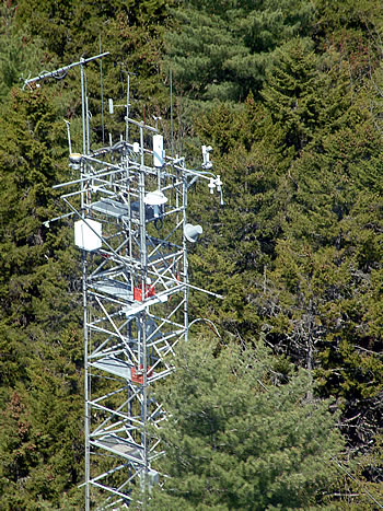 This flux tower extending above spruce and hemlock trees at the Howland Cooperative Research Forest in central Maine is contributing to long-term ecosystem studies supported by the DOE Office of Science and the USDA Forest Service`s Northern Research Station. This flux tower is located on land owned by the Northeast Wilderness Trust.  Photo by John Lee, University of Maine.