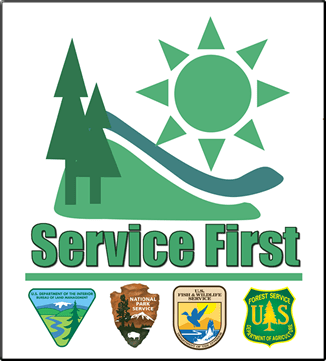 Family members of united states military members are displaying united states service flags again, which has rarely seen since world war ii. Logo And Letterhead Us Forest Service