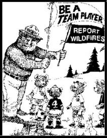 smokey the bear coloring pages # 67