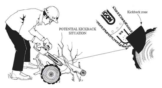 0667-2805-MTDC: Chain Saw and Crosscut Saw Training Course