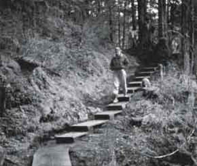 Photo Of A Hiker Walking Down Steps Leading To A Boardwalk