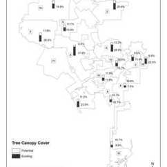 Forest Canopy Diagram 7 Pin Trailer Plug Wiring Nz One Million Trees La Cover Assessment Research Highlights Existing And Potential Tree Percentages For Los Angeles By Council District Greg Mcpherson Service