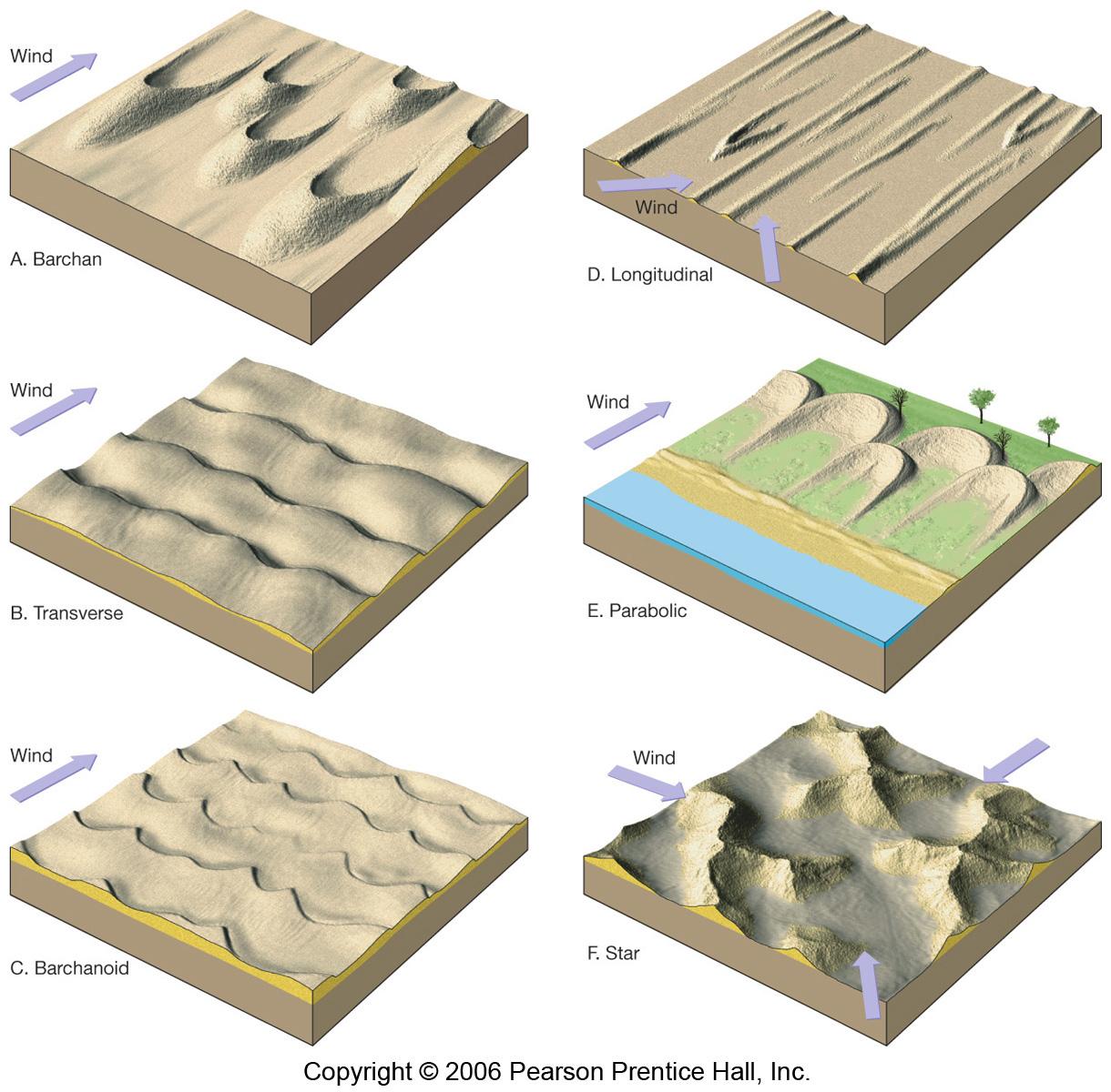 types of sand dunes diagram 12v relay wiring spotlights 06 36 jpg