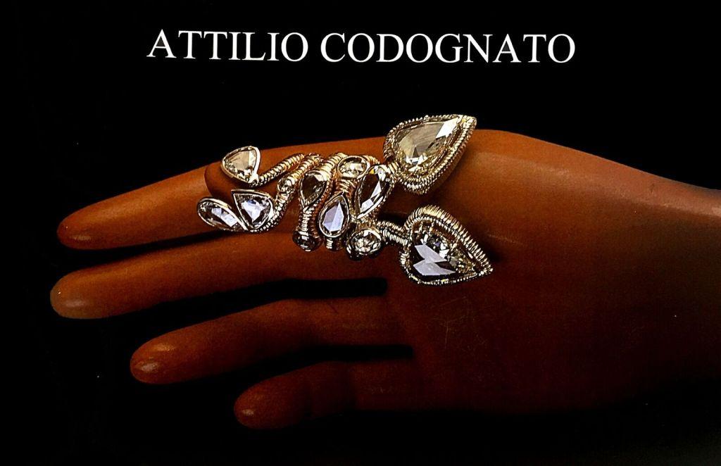 Attilio Codognato Exhibition