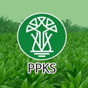Status kelembagaan Pusat Penelitian Perkebunan tidak jelas, FSPBUN Surati Presiden