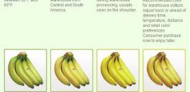 Fresh Produce Manual pma