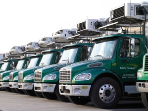 Delivery Trucks lined up