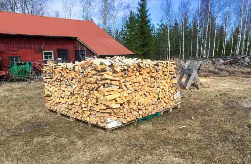 Har du tillgång till lite skog kan några dagars arbete under vårvintern ge dig all ved du behöver för uppvärmning kommande vinter.