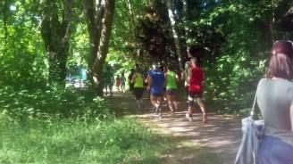 Lauf quer durch die grüne Fasanerie