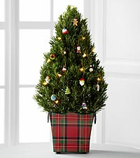 The FTD® Holiday Glow Tree by Better Homes and Gardens®