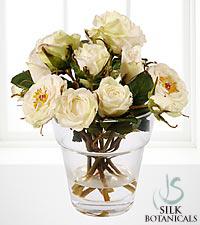 Jane Seymour Silk Botanicals White Garden Roses