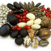natural_seed_beads