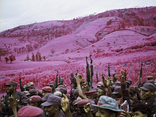 pinksoldiers8