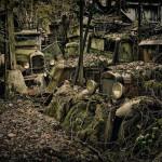Car Graveyards Photography-4
