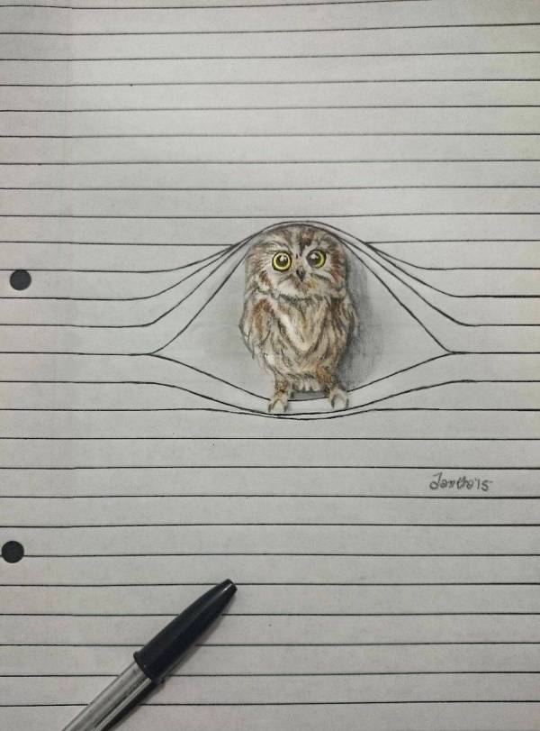 Cute Animal Pencil Drawings Fubiz Media